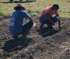 Quand jardinage rime avec partage