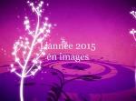 L'année 2015 en images